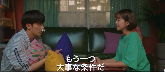 『私は道で芸能人を拾った』OST・歌詞(和訳)をご紹介!主題歌・挿入歌・MV動画付き!