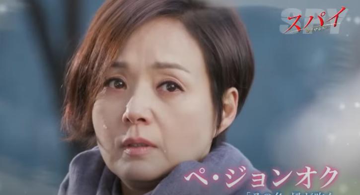 【SPY】韓国ドラマ Netflix・Hulu・dTV・Amazonプライム 配信は?調べてみた♡